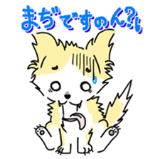 CHINAKO's EVERYDAY  - CHINAKO THE DOG - sticker #114380