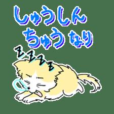 CHINAKO's EVERYDAY  - CHINAKO THE DOG - sticker #114400