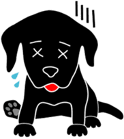 black lab Lucas sticker #115145