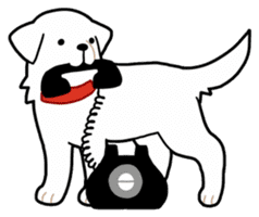 A Dog Called SHIRO sticker #115738
