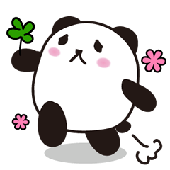 marukko panda