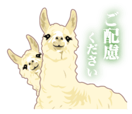 Alpaca and friends business Japanese sticker #119225