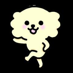 Cheerful Chihuahua