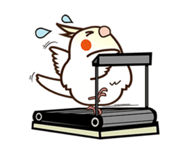 Miss Lovebird-Naughty Cockatiel sticker #122411
