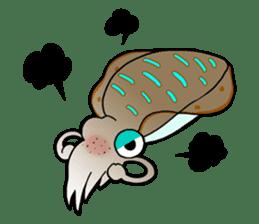 Bigfin reef squid sticker #125141