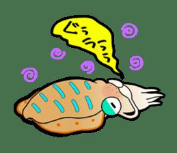 Bigfin reef squid sticker #125143