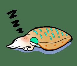 Bigfin reef squid sticker #125145
