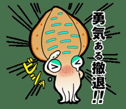 Bigfin reef squid sticker #125147