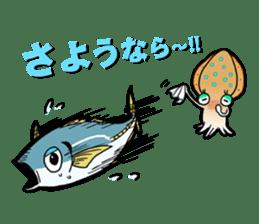 Bigfin reef squid sticker #125159