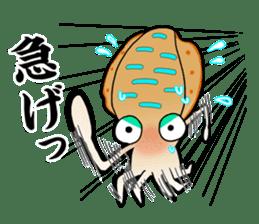 Bigfin reef squid sticker #125176