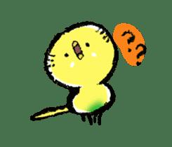 Budgerigar parakeet series sticker #126622