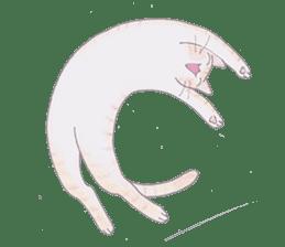 MY CATS LIFE sticker #127049