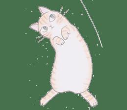 MY CATS LIFE sticker #127083