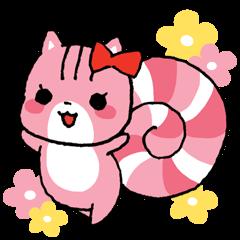 Lollipop Squirrels