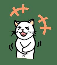 strawberry cats sticker #129122