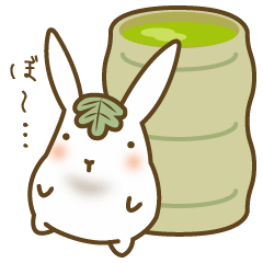 refreshments rabbit