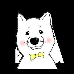 Meisuke