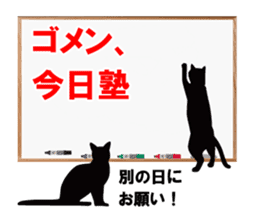 Cat student sticker #131114