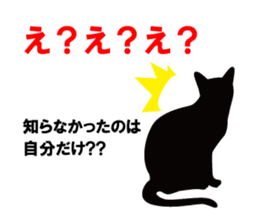 Cat student sticker #131139