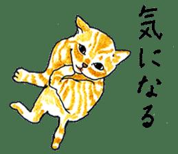 brown tabby cat koto-chan sticker #131143