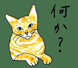 brown tabby cat koto-chan sticker #131150