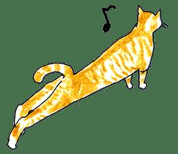 brown tabby cat koto-chan sticker #131163