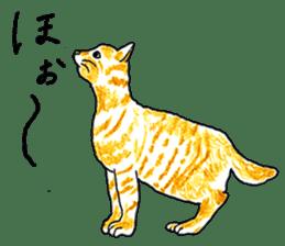 brown tabby cat koto-chan sticker #131174