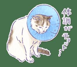 Ponta and Yukie sticker #132475
