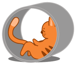 Cute Cat - funny and cute sticker #134972