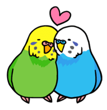 Coby and Jolly budgies sticker #135633