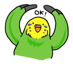 Coby and Jolly budgies sticker #135644
