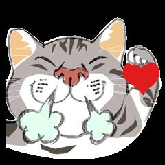 Meow Meow Cats
