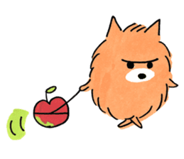 Shiba Inu Gen-chan and his friends sticker #142389
