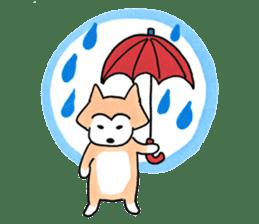 Shiba Inu Gen-chan and his friends sticker #142393
