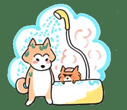 Shiba Inu Gen-chan and his friends sticker #142404