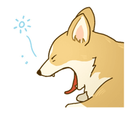 MAIRO the Corgi sticker #145415