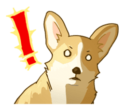 MAIRO the Corgi sticker #145417