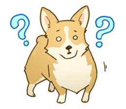 MAIRO the Corgi sticker #145418
