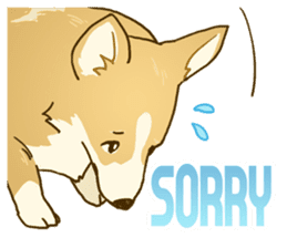 MAIRO the Corgi sticker #145421