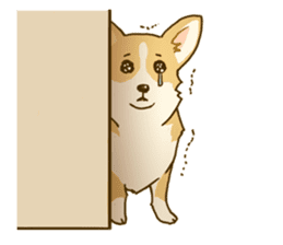 MAIRO the Corgi sticker #145433
