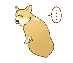 MAIRO the Corgi sticker #145436