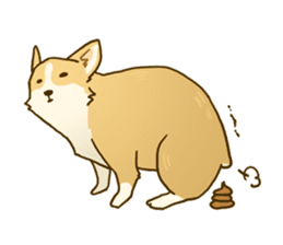 MAIRO the Corgi sticker #145444