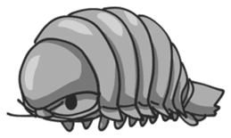 Giant Isopod sticker #146212