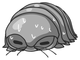 Giant Isopod sticker #146247