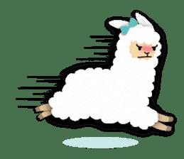Alpaca girls sticker #155370