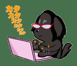 Every day of pet dog jazz sticker #157315