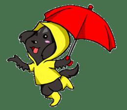 Every day of pet dog jazz sticker #157317