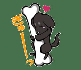 Every day of pet dog jazz sticker #157327