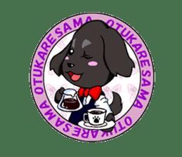 Every day of pet dog jazz sticker #157336
