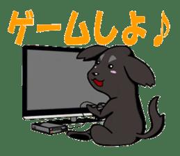 Every day of pet dog jazz sticker #157343
